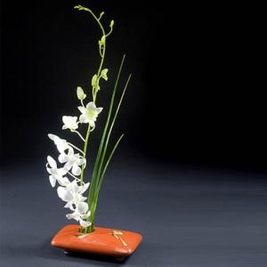 Mentre il gusto occidentale tende a dare importanza alla quantità, ai colori dei fiori puntando l'attenzione maggiore sulla loro bellezza, i giapponesi privilegiano gli aspetti lineari della composizione ed hanno raggiunto un tale grado di perfezione in quest'arte che il vaso, gli steli, le foglie ed i rami acquisiscono un valore complementare a quello dei fiori...