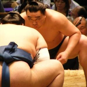 """Il sumo è un combattimento tipico del Giappone e ha origini antichissime. Inizialmente era praticato come rito della religione Shinto, tanto che in alcuni templi esistono delle rappresentazioni nelle quali un lottatore """"combatte"""" con un'entità spirituale e gli dèi venivano invocati affinché concedessero abbondanti raccolti. Le tracce di questa religiosità si possono ritrovare nella copertura del ring, simile a quella di un santuario, e nell'usanza di gettare sale a terra per purificare il ring."""