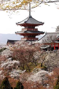 Aikido e dintorni magazine i periodi delle arti e dell for Abitazioni giapponesi