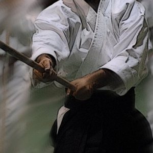 Antica quanto l'arte dell'arco e delle frecce, e forse ancora di più, era l'arte del bastone e di altri strumenti spuntati più o meno simili. Quest'arma, che per dimensioni e forma andava dalla tipica clava al modello allungato dell'asta di lancia, è vecchia quasi quanto I'umanità, e vi sono molti indizi che il bushi giapponese la conoscesse bene e vi si esercitasse assiduamente.