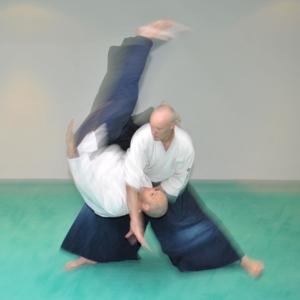 """Insegnante professionista dell'Aikikai Francoforte, oggi Seishinkai, laureato in filosofia, allievo di C.Tissier fino a 5th dan, oggi studente al tempio di Kashima. Lavora un sistema di budo chiamato appunto """"Seishinkai"""", dove sviluppa l'Aikido secondo le basi di Tissier Shihan, il Kenjutsu Kashima style secondo Inaba Sensei, una forma di Jojutsu derivata dal Kashima e da lui catalogata e un approccio Aiki alle meccaniche di difesa personale..."""