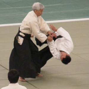 49th All Japan Aikido Demonstration