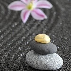 Aikido e dintorni magazine 2013 febbraio - Giardino zen in miniatura ...