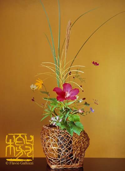 ikebana-flavio-gallozzi (1)