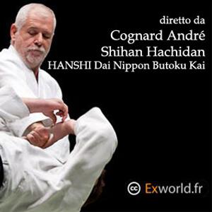 L'Accademia di Aikido e Cultura Tradizionale Giapponese è lieta di invitarVi allo stage di Aikido Kobayashi Ryu diretto da  André Cognard VIII°Dan - Hanshi Dai Nippon Butoku Kai a Verona nei giorni 30 Novembre e 1 Dicembre 2013