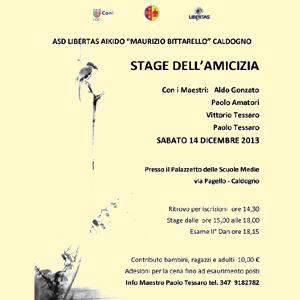 STAGE DELL'AMICIZIA Con i Maestri: Aldo Gonzato Paolo Amatori Vittorio Tessaro Paolo Tessaro