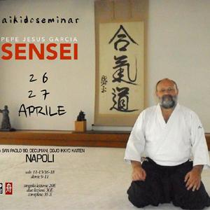 Stage di Aikido con il M° Pepe Jesus Garcia Napoli 26-27 Aprile 2014.