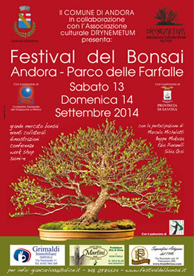 festival-bonsai-2014-sidebar