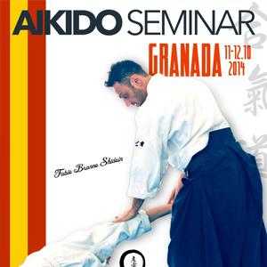 Seminar Aikido con il N° Fabio Branno. Granada