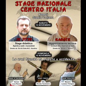 Il prossimo 15 e 16 Novembre 2014 presso lo Stadio Collana di Napoli si terrà  uno Stage di Arti Marziali per partecipare basta chiedere a:maaitaly@hotmail.it