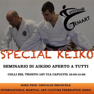 Special Keiko Seminario di Aikido aperto a tutti Colli del Tronto (AP) Via Capucita 16 Novembre 2014 Info:Alessandro Fratini 3405002401