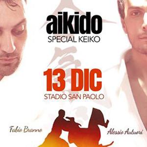 Aikido Special Keiko  13 Dicembre 2014 Stadio San Paolo