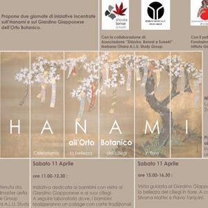 HANAMI ALL'ORTO BOTANICO. CELEBRIAMO LA BELLEZZA DEI CILIEGI IN FIORE Il Museo Orto Botanico di Roma propone due giornate dedicate alla fioritura dei ciliegi del Giardino Giapponese, con visite guidate, dimostrazioni di ikebana e attività per i bambini.