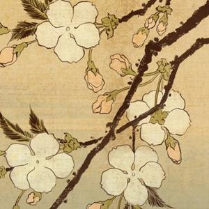 I rapporti tra l'arte giapponese, cinese ed europea nel XVII e XVIII secolo Bologna, 18 aprile 2015 ore 14.30-17.30 Laboratorio di interpretazione e lettura estetica dell'arte del Giappone condotto dal prof. Giovanni Peternolli