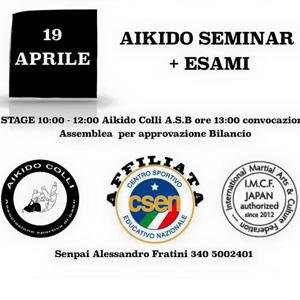 Colli del Tronto Special Keiko Aikido del 19-04-2015  Aikido Seminar +Esami M° Alessandro Fratini