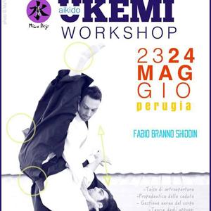 Aikido Workshop 23-24 Maggio 2015 Perugia