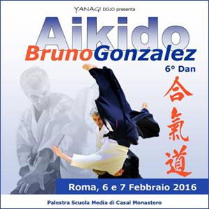 Stage di Aikido - Roma