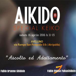 """Aikido Special Keiko """"Ascolto ed adattamento 16 Aprile 2016"""
