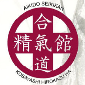 Stage di Aikido con il M°Tessaro via Pieve 50 Breganze